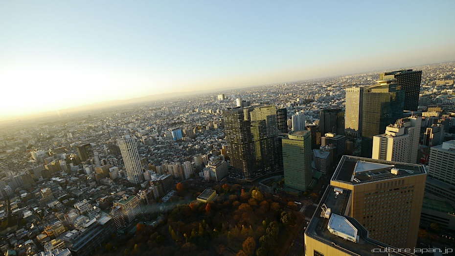 Shinjuku in the Winter