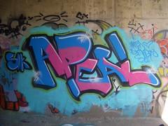 Ikarus exchange (Twikski) Tags: graffiti dunedin slk ikarus apeal