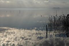 Il lago d'inverno (da.geli) Tags: sky italy lake water clouds reflections umbria trasimeno mygearandme mygearandmepremium illagodinverno