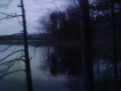 One Loon Lake II (wood_owl) Tags: trees winter ohio lake blur nature water silhouette forest dark hope one evening kent experimental december dusk song bare dream shore memory mystical loon thesound iremember sooc townerswoods