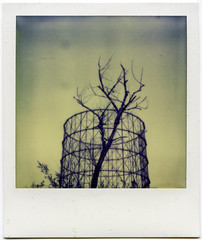 We built another world (Nightdriver) Tags: rome roma tree river polaroid sx70 cool fiume tevere 70 gazometro gasometer gasometro polaroidsx70 px tiberriver ostiense impossibleproject