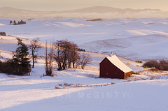 Palouse Winter Farm (Ryan McGinty) Tags: winter landscape farm moscow idaho redbarn palouse latahcounty ryanmcginty