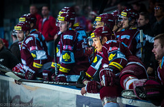 Ready to leap (XyrisKenn) Tags: history ice hockey sport prague competition sparta puck hcsparta