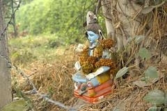 Bholenaath (sachink20) Tags: travel winter india beautiful statue canon temple photography god delhi awesome hindu deity shiv bholenath bhole sachin20 sachink20