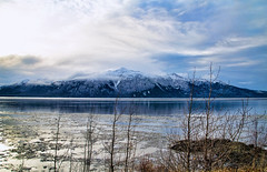 winter afternoon (ms.bailey) Tags: blue alaska clouds icy turnagainarm kenaimountains