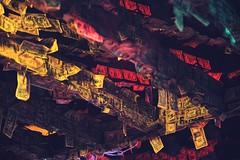 Dollar bills lining the walls and poles (WhishingOnAsTar!) Tags: chickens neon miami dolphins tropical greenery caribbean keywest hemingway roosters floridakeys keylargo superdog heartbreakhotel floridian duvalstreet polydactylcats sixtoedcats palmread spanishcolonialstyle lonelyst quirkycharm thesouthernmostcityintheunitedstates colorfulvillagestreets cubancockfighters