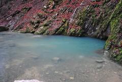 source bleue (aurelie amiot) Tags: nature beauty landscape turquoise hiver rivire 25 paysage source comte 2012 bleue decembre souterraine malbuisson doubs chaudron franche cavit