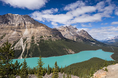 Peyto Lake (seryani) Tags: trip viaje trees summer vacation naturaleza mountain lake holiday canada mountains tree nature water canon landscape rockies lago outdoors nationalpark woods agua scenery holidays rboles view outdoor turquoise lakes lac august paisaje agosto bosque alberta verano vista banff rockymountains montaa vacations vacaciones mirador canad montaas 2012 banffnationalpark peytolake rocosas bosques peyto canadianrockies parquenacional airelibre turquesa canadianrockymountains canonef2470f28l canon2470 montaasrocosas canonef2470 canoneos5dmarkii 5dmarkii peytolakeviewpoint canadarockymountains august2012 summer2012 montaasrocosasdecanad lagopeyto verano2012 agosto2012 vacaciones2012 parquenacionaldebanff miradorlagopeyto