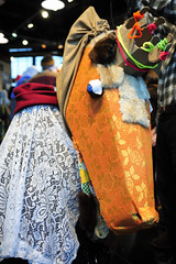 "MummersParade_8730GSL • <a style=""font-size:0.8em;"" href=""http://www.flickr.com/photos/59883129@N06/8327002364/"" target=""_blank"">View on Flickr</a>"
