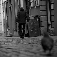 down the street (wianphoto) Tags: street blackandwhite white black pen dove streetphotography olympus schild mann heidelberg taube 45mm vogel jacke tasche stiefel bofinger pflastersteine pl5 schritt streetphotografie blackwhitephotos olympuspenpl5