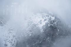 Wallpaper-calendario Enero. (Carlos Acin) Tags: winter wallpaper paisajes naturaleza blanco landscape nieve carlos enero invierno fotgrafo fotografo fondodeescritorio calendario fondodepantalla acin tormentadenieve carlosacin fotografadenaturaleza fotgrafodenaturaleza wwwcarlosacincom fotografodenaturaleza calosacinfotografo carlosacinfotografo carlosacnfotgrafo carlosacnfotografa httpwwwcarlosacincom carlosacinfotografa carlosacincom