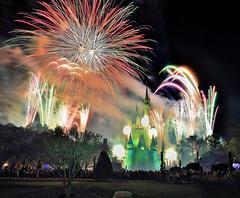 Magic Kingdom (wdwSteve) Tags: world nikon magic sigma kingdom disney f28 d90 1750mm