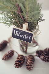 Winter (Carmen Hache) Tags: winter stilllife plants diy plantas getty athome invierno cristal mesa gettyimages 50mmf14 pizarra tarro pias
