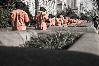 Witness Against Torture: Filing Past Plants