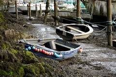 Rowing Boats (Shockin Goblin) Tags: old wet river boats wooden bucket cornwall path tired rowing penryn