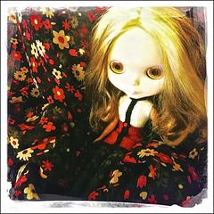 ADAD 2013/21 -- Seven and her orange eyes