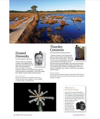 Surrey Life - February 2013 (markhortonphotography) Tags: magazine february surreylife