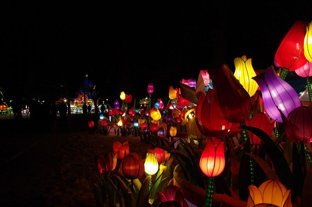 China Light Festival, Rotterdam