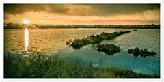 Augusta Saline (Francesco Castro) Tags: panorama sun landscape lago castro sicily augusta sole saline sicilia siracusa francesco