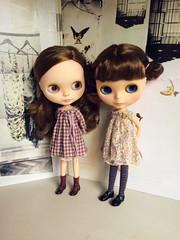 Brown haired girls.. (little_moshi) Tags: blythedoll liberty fabric hilarywagstaff moshimoshiblythe aztecarrivalblythe