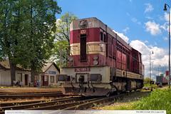 742.081-3 | tra 331 | Lpa nad Devnic (jirka.zapalka) Tags: train trat331 rada742 czech stanice lipanaddrevnici cdcargo