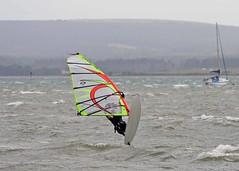 Aug20096a (Mike Millard) Tags: hamworthypark pooleharbour windsurfers
