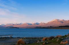 Lake Tekapo at Golden hour (PsJeremy) Tags: snowcappedmountains tekapo newzealand nz goldenhour