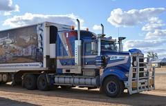 KJM (quarterdeck888) Tags: 909 kenworth kjm spiders roadtraintrucks transport roadtransport haulage lorry class8 tractortrailer overtheroad heavyhaulage australianroadtransport nikon d7100 semitrailer frosty quarterdeck flickr jerilderietrucks jerilderietruckphotos truckphotos australiantruckphotos expressfreight freight roadfreight truck outbacktrucks strzeleckitrack innaminka
