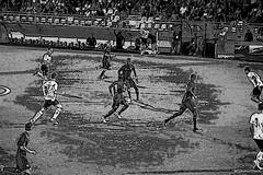 Happy Birthday ACF Fiorentina 90 years of joys and sorrows More pain than joy (VincenzoGhezzi) Tags: fiorentina football sport canon