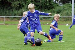 Feriencamp Pln 30.08.16 - c (13) (HSV-Fuballschule) Tags: hsv fussballschule feriencamp pln vom 2908 bis 02092016