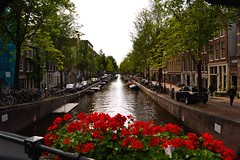 Amsterdam (__tommy.96__) Tags: red flower water not always sunny amsterdam amateur