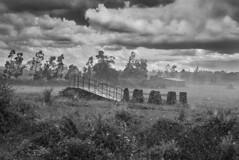 Stillness,-Tanzania-2015