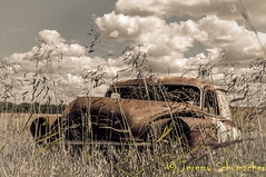 Roadside Rust (Jeremy Schumacher) Tags: roadside rust vintage landscape still life car vehicle weeds sky antique sepia monochrome nikon d5000