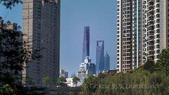Shanghai big 3 (b56n22) Tags: shanghai skyscraper buildings bluesky wolkenkratzer city asia china chinese d810 135 135mm 135f2dc