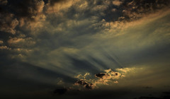 Smoke (Dreaming of the Sea) Tags: nikon d7200 dusk trees twilight tamron tamronsp2470mmf28divcusd clouds storm sunset bluesky bundaberg september 2016 2470mm 500v20f 1000v40f topf100 7dwf