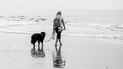 Die Frau mit dem Hund... (lichtflow.de) Tags: canon eos5dmarkiii festbrennweite nordsee nordstrand urlaub ef100mmf28lisusm sw schwarzweis strand beach bw spo meer sea hund dog frau woman pet human