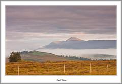 Stockiemuir And Ben Lomond (flatfoot471) Tags: 2015 autumn benlomond dawn landscape mist normal queensview scotland stirlingshire stockiemuir unitedkingdom