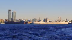 060crpshsataconfwl (citatus) Tags: freighter algosoo eastern end toronto harbour essroc cement carrier stephen b roman ship channel canada fall morning 2016 harbor pentax k3 ii