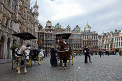 Brussels - La Grand Place (JOAO DE BARROS) Tags: barros joo belgium brussels square people street architecture horse wagon
