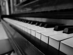 Tickle The Ivories. Sept 2016 (SimonHX100v) Tags: piano pianokeys keyboard dof depthoffield pov pointofview lowpov nottingham nottinghamshire nottinghamtrainstation blackandwhite blackwhite bw greyscale monochrome monotone closeup sonyhx100v simonhx100v musicalinstrument instrument pianist music