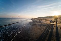 Morning on the beach (martinstelbrink) Tags: morning morgen sonne sun schatten shadows beach strand summer sommer surf brandung dogs hunde walking spaziergang sony alpha7rii a7rii voigtlndervmeclosefocusadapter voigtlnderheliar15mmf45iii voigtlanderheliar15mmf45iii voigtlnder voigtlander heliar 15mm f45