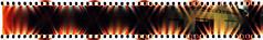 Damn! (kevin dooley) Tags: lomographysprocketrocket sprocketrocket sprockets lomo film panorama pan crossprocessed xpro az arizona damn