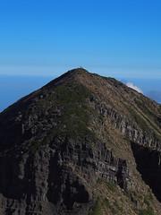 P9240148 (David.CY.Yang) Tags:  syuemountain   eastpeak snowmountain   taiwanmountainash taiwanlaughingthrush  usnea  dawn  holyridgeline   glacialcirque