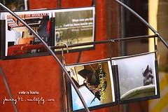 Palio Inn review by มาเรีย ณ ไกลบ้าน_002