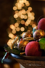Some Christmas Cheer (Thousand Word Images by Dustin Abbott) Tags: christmas winter stilllife ontario canada beautiful pembroke holidays warm bokeh naturallight event fullframe selectivefocus narrowdepthoffield closeupview canoneos5dmkii thousandwordimages adobelightroom4 emmanuellighthouseunitedpentecostalchurch dustinabbott dustinabbottnet tamronsp2470mmf28vcusd