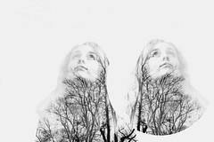 again (The_Last_Magnus) Tags: blackandwhite tree circle mirror opposite doubleexposure overlay negativespace juxtaposition
