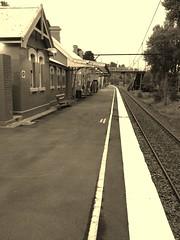 For the last time this year (jjripsnorter) Tags: commute choochoo uploaded:by=flickrmobile flickriosapp:filter=ocelot ocelotfilter wentworthfallsrailwaystation