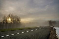 Brkini's way (Orso Grisbi) Tags: road light sun fog way strada slovenia slovenija sole nebbia brkini