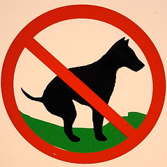 Don't be leaving poop on the field! (Morton Fox) Tags: dog sign nj pooping absecon