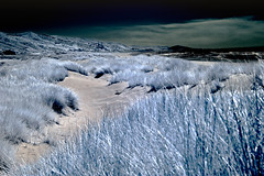 Manzanita_Oregon (S. Peterson) Tags: beach infrared stevepeterson manzanitaoregon
